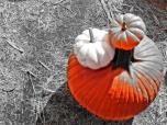 color-block-orange