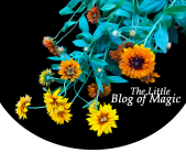 The Little Blog of Magic Logo